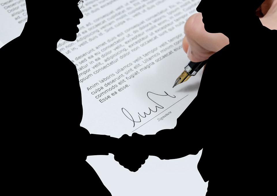 contrato de fianza solidaria