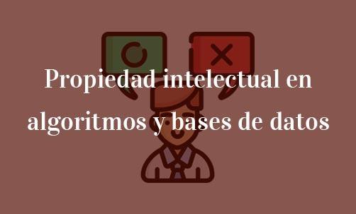 Propiedad-intelectual-en-algoritmos-y-bases-de-datos-Navas-&-Cusí-Abogados-especialistas-en-propiedad-intelectual-y-derecho-Comunitario
