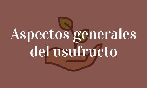 Aspectos-generales-del-usufructo-Navas-&-Cusí-Abogados-especialistas-en-Derecho-Civil